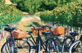 Vacanze green per viaggiatori dal pollice verde